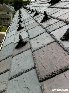 DaVinci Slate with snow guards