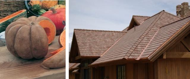 Brown pumpkin inspired color scheme