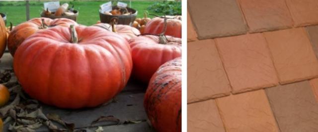Red pumpkin inspired exterior color scheme