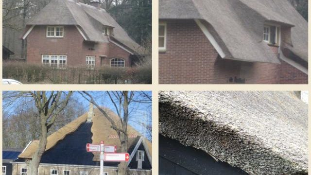 thatched roofs in europe