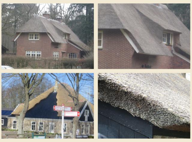 thatched_roofs_w640