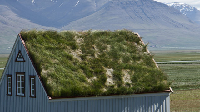 Green roofing materials