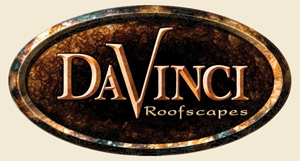 davinci_logo_png