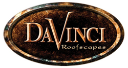 davinci_logo_low_res