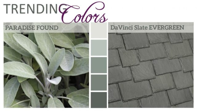 Color Trends 2016 Paradise Found