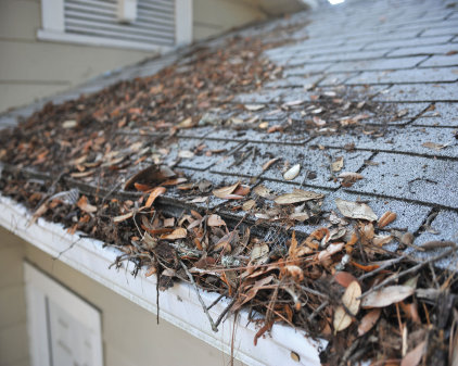 gutter clogged with leaves and gunk