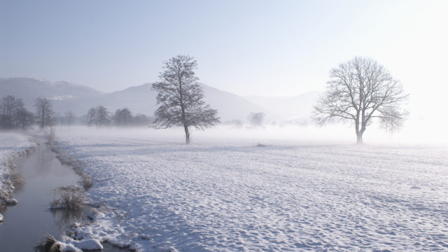 winter_snow_field