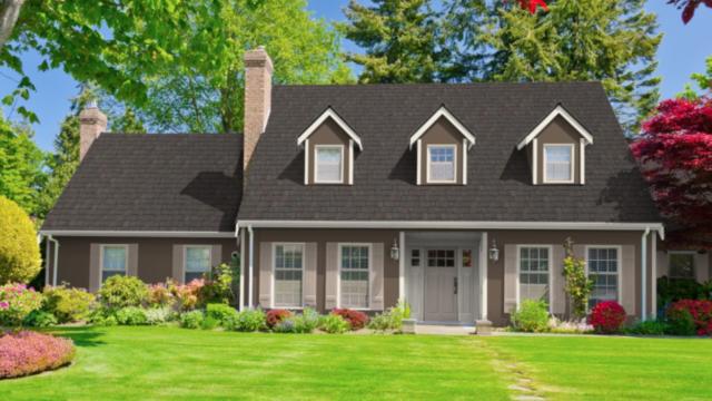 home exterior color scheme mountain roof