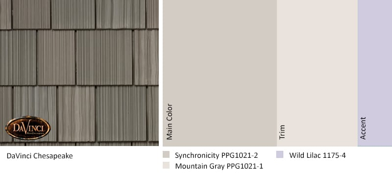 color trends for 2019 DV Shake MW Chesapeake