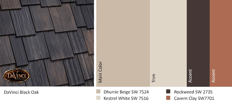 Color TRENDs 2019 Shake MW Black Oak Dhurrie Beige